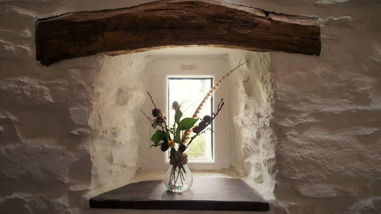 Hen Ffermdy holiday cottage - windowsill flowers