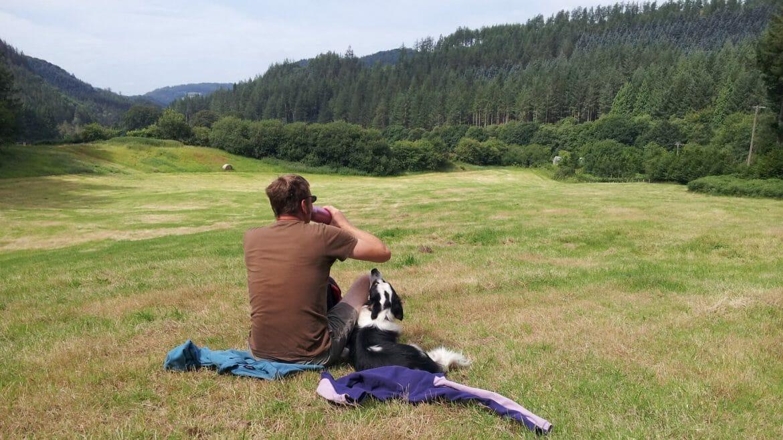 Dog Friendly Holidays in Wales - Hafod Estate Walk